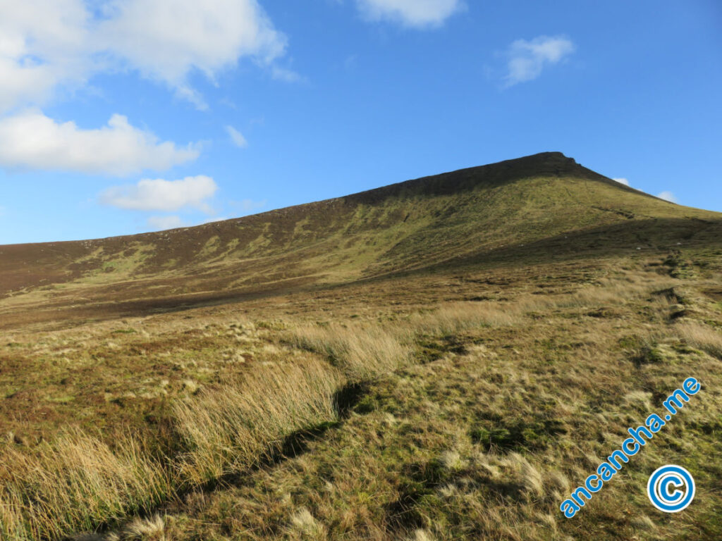 Galtymore Cush Cois looking back